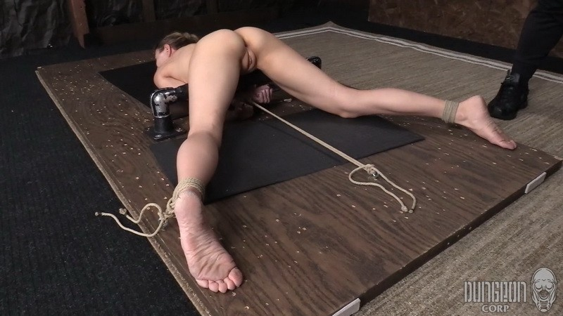 Busted and Bound - Agatha Delish. Dungeoncorp.com (1185 Mb)