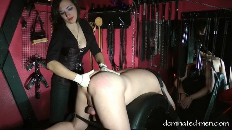 Baroness Mercedes - At the end you are my Fucktoy. 2018-08-27. Dominated-men.com (336 Mb)