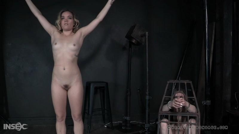 Spreadable - Katie Kush (Part2). 29.02.2020. RealTimeBondage.com (4129 Mb)