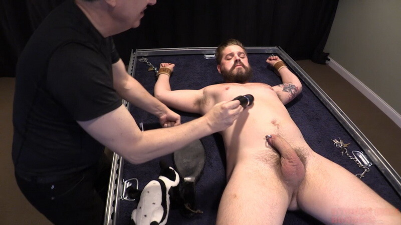 Caught In The Act (T017). Jan 20 2021. Seriousmalebondage.com (1068 Mb)