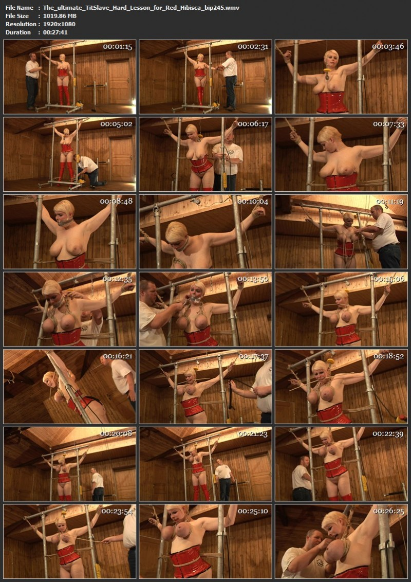 The ultimate TitSlave - Hard Lesson for Red Hibisca (bip245). Jul 10 2021. Breastsinpain.com (1019 Mb)