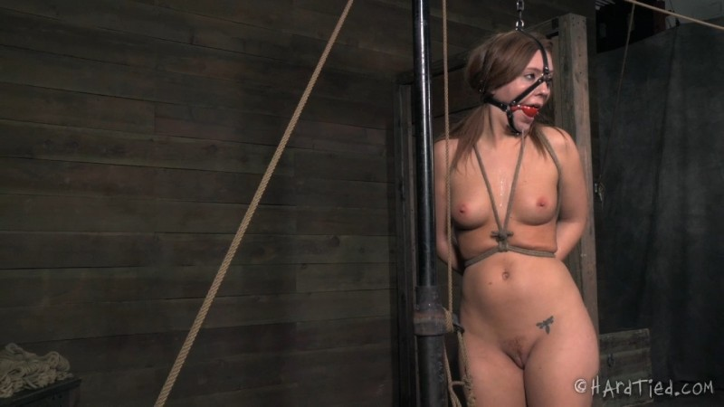 Wet & Desperate 2 - Maddy O'Reilly. HardTied.com (2485 Mb)